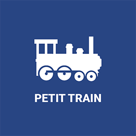 Petit train de massangis